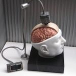 BrainGate Technology Enables Paralyzed Woman to Control Robotic Arm