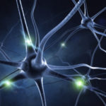 Stem Cell Research Offers New Hope for Repairing Brain Damage
