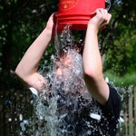 Ice-Bucket Challenge Supports Embryonic Stem Cell Research—And That's a Good Thing