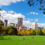 <em>Seeing Central Park: The Official Guide to the World's Greatest Urban Park</em>, by Sara Cedar Miller